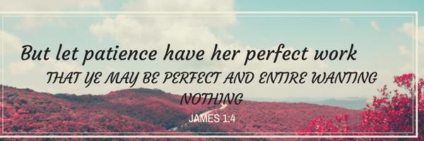 James1.4